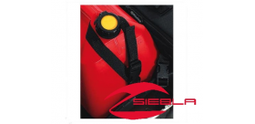 FUEL CAN MOUNT STRAPS BY POLARIS®